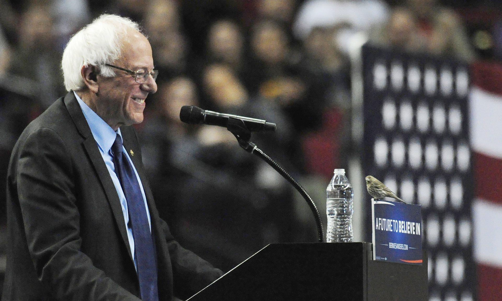 Bernie dan Era Egalitarian